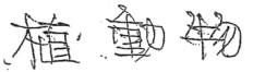 汚い字の筆跡:異常接筆型